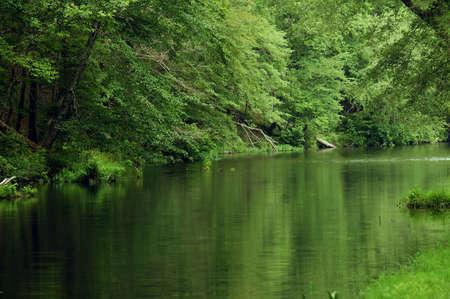 Cheaha River