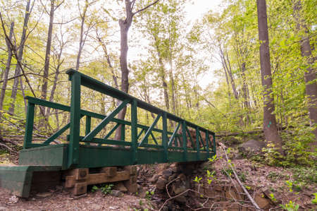 Wooden Footbridge in forest of New Jersey along hiking trail in early summer