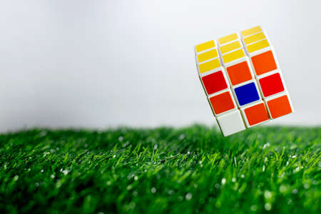 Rubik floating on the green grass