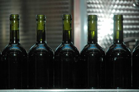 costumers: Wine bottles in winery. Preparing for costumers.