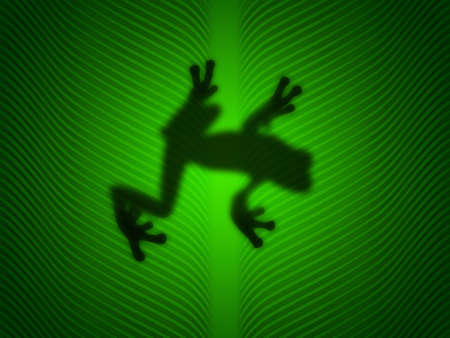 Treefrog silhouetted on a green leaf photo