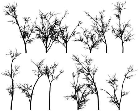 Some winter tree s Stock Vector - 15477622