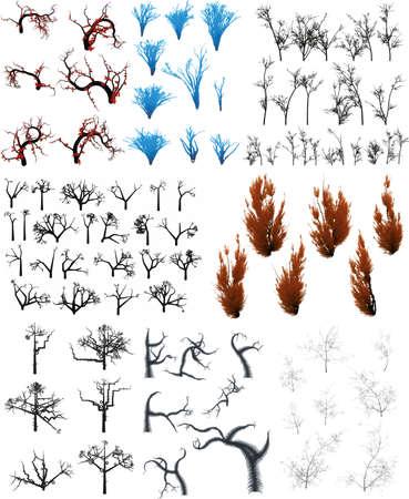 Tree Collection Illustration
