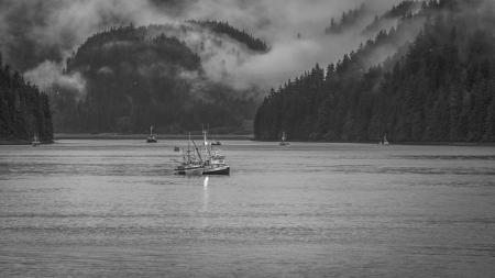 Fishing Among Queen Charlotte Islands