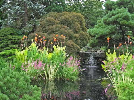 Waterfall empties into pond in lush garden.