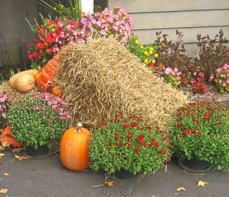 Autumn mound with hay, mums and pumpkins. Imagens