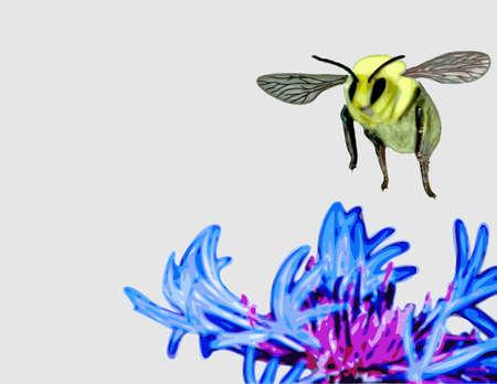 ミツバチは花の上に着陸  イラスト・ベクター素材