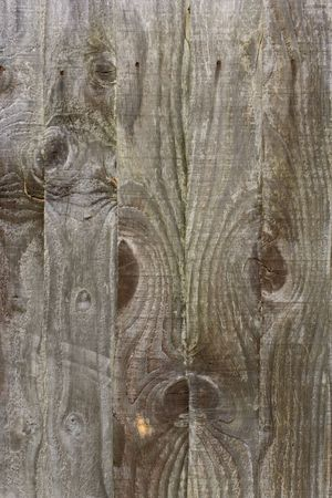 fence panel: wooden fence panel with knots