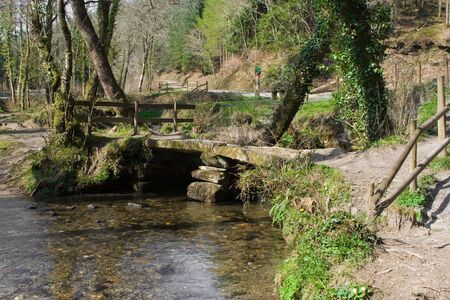 Old stone bridge in forestbr photo