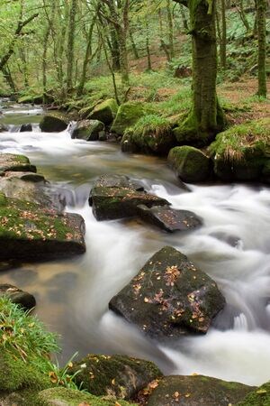white water around boulders in river in forest Stock Photo - 1806143