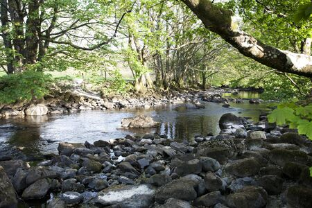 sunshine and shade on a gentle river in Wales