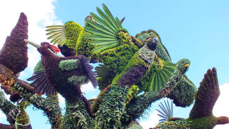 MOSAICULTURES INTERNATIONAL 2013 in Montreal, Quebec, Canada, Montreal entry: The Bird Tree. Editorial
