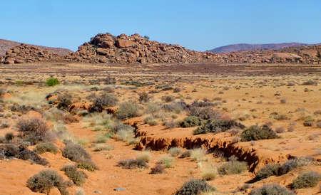 Landscape in the Kalahari Desert, South Africa