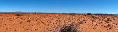 Panoramic Landscape in the Kalahari Desert, South Africa