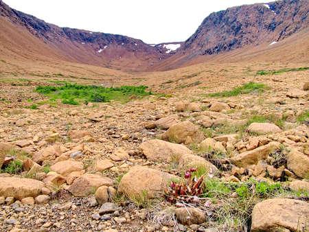 Tablelands in Gros Morne National Park Standard-Bild - 124862275