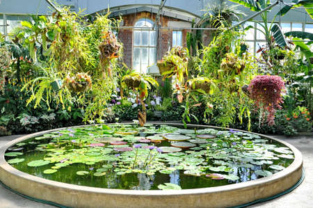 Auckland, New Zealand - December 5, 2016:  Tropical plants and circular pond at the Auckland Domain Winter Garden, New Zealand. Editorial