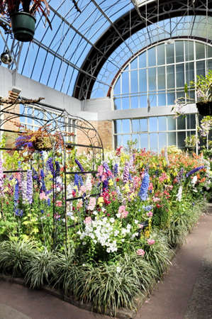 Auckland, New Zealand - December 5, 2016:  View of flowers growing inside the tropical hot house at the Auckland Domain Winter Garden, New Zealand. Editorial