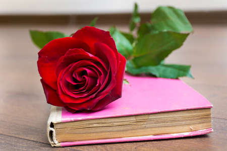 red rose and pink book. Valentines Day background