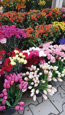 Many Blooming Flowers  in a Flower Shop Zdjęcie Seryjne