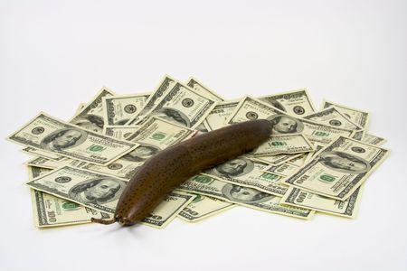 Wood carving of a slug on a pile of cash money representing a sluggish market or economy Banco de Imagens