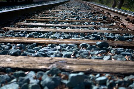 wood railroads: Railroad track in miller park Sacramento taken with narrow depth of field