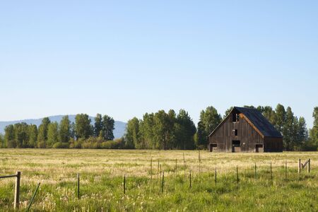 Old wood barn in grass field with trees and sky Stock Photo - 4943192