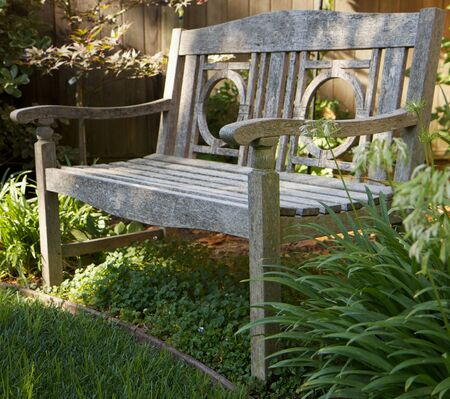 Weathered wood bench n green garden photo