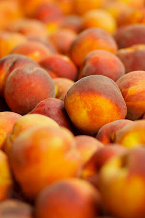 a Pile of red, orange, and yellow peaches  for sale at the farmers market Banco de Imagens