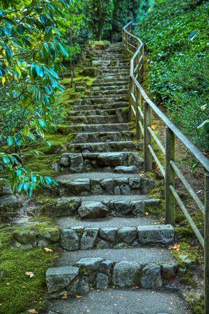 コケで覆われているし、HDR の緑の foilage に囲まれて日本の庭の石造りの階段 写真素材
