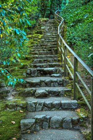 Japanese garden stone staircase covered in moss and surrounded by green foilage in HDR photo