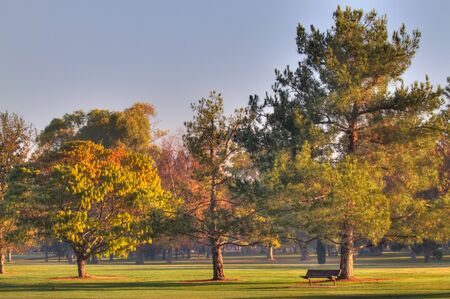 Early Morning Golf Course Greens  with bench done in high dynamic range HDR photo