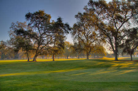 Early Morning Golf Course Greens done in high dynamic range HDR