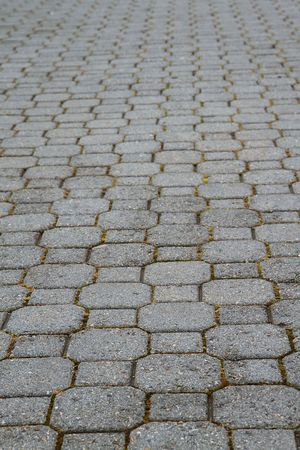 section of stone concrete pavers or tiles separated by moss trailing to soft focus perspective photo