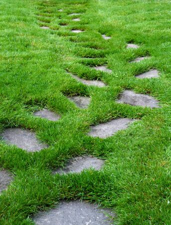 緑豊かな緑の草の芝生の上の石舗装のパス 写真素材