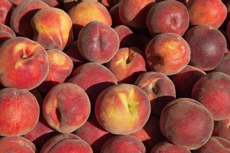 sun lit: Pile of sun lit peachs at the farmers market Stock Photo