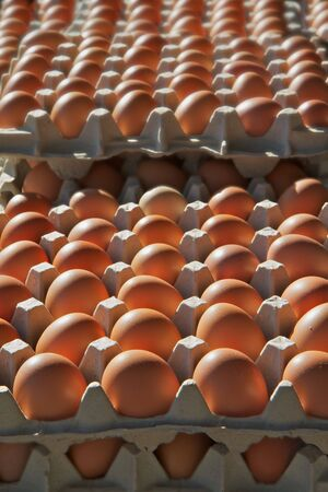 dozens: Stacks of dozens of brown eggs at the farmers market