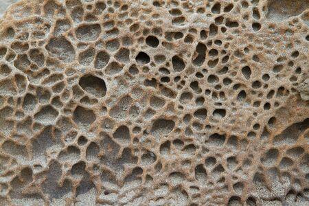 Sponge texture stone on beach near ocean