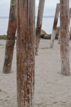 Reminents of an old ocean pier focus on single vertical post with the other posts in background photo