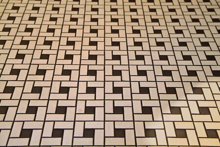Section of some black and white deco tile flooring Banco de Imagens - 7599424