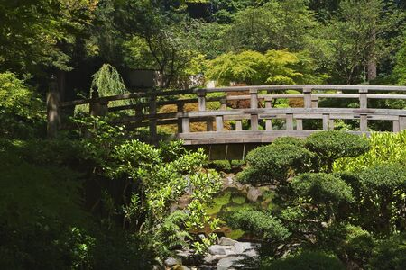 Japanese Wood Bridge in garden of green and gold trees photo