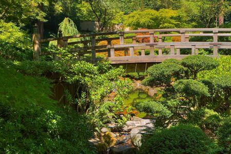 vlonder: HDR-afbeelding van Japans Wood Bridge in de tuin van groen en goud bomen  Stockfoto