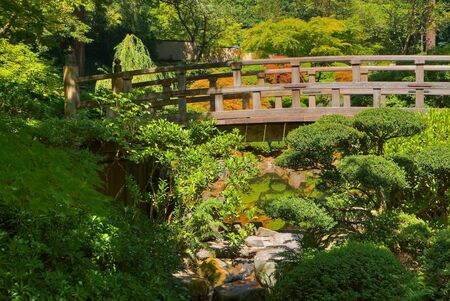 HDR image of Japanese Wood Bridge in garden of green and gold trees photo