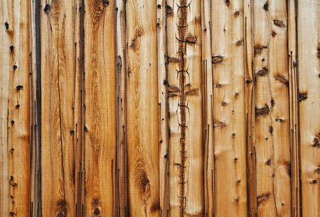 knotty: Brown and tan knotty and grained wood wall Stock Photo