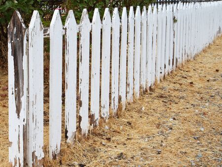 Weathered and peeling white picket fence trialing into dimishing perspective