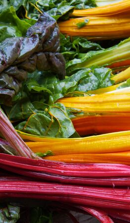 Pile of brigh red, yellow, orange, and green colors of rainbow chard at the farmers market Banco de Imagens