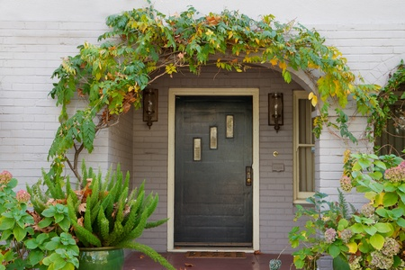 arched: Wisteria arched  black windowed door with further framing of fern and other plants