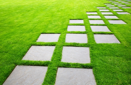 pavers: Diagonal Rows of Large Stone Pavers green grass lawn Stock Photo
