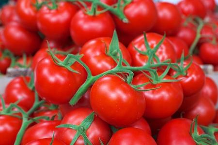 農民市場で緑のブドウ畑と明るい赤いトマトの山