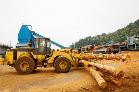 lumber mill: Forest Logging Forklift or mover working at a lumber mill