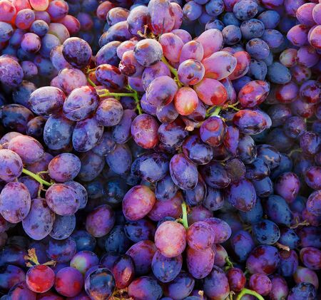 Piles of purple grapes at the Farmers market